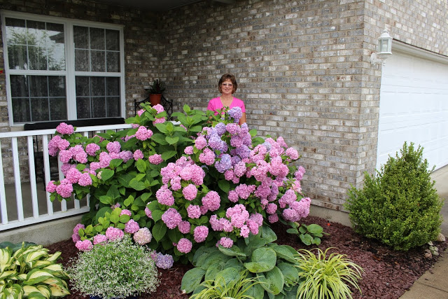 Brenda Frey is Named Gardener of the Year
