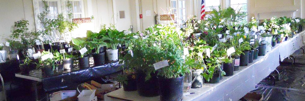 May Plant Sale & Auction May 8th