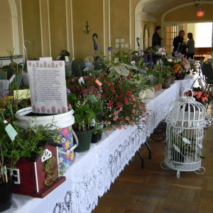 May Plant Auction & Sale