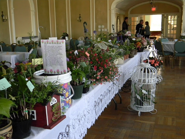 Plant Sale & Auction – May 7th