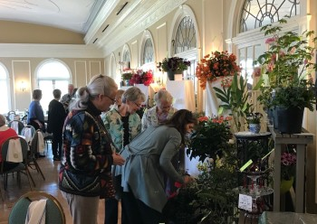 2018 Plant Sale and Auction